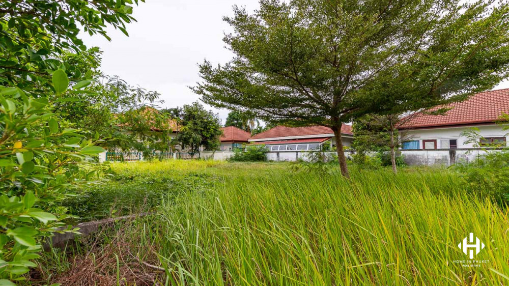 Good Size Land Plot in Chalong Estate