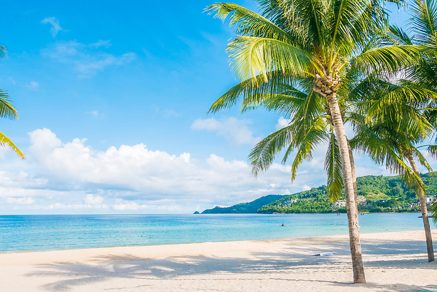 Palm trees and a blue sky on Patong Beach